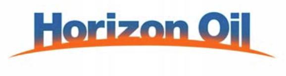 Hzn logo rgb